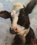 Callens Blue Cow