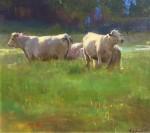 Callens Green Pastures