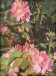 Callens Spring Bloom - Copy