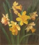 Alice Chittenden - Daffodils