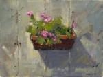 Don Ealy - Petunia's Shadow