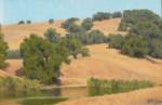 Figone California Foothills