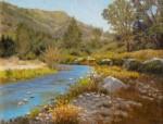 Figone Creekside poppies Pinnacles