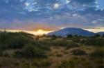 Figone High Desert Sunset