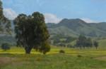 Allen Figone - View from Montgomery Hill Park