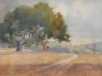 Percy Gray - Marin Pathway