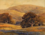 Percy Gray Monterey Poppies with Oaks