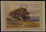 Percy Gray Rocky Hillside & Oak Near the Bay