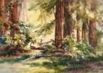 Hofstetter Forest Glee