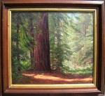 Judson Redwoods Restored