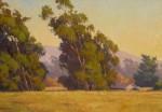 Kratter A Reign of Eucalyptus