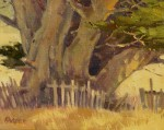 Paul Kratter - Cypress & Old Broken Fence
