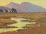 Pail Kratter Marsh Patterns II