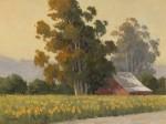 Kratter Sunflower Field 12x16 oil on linen panel S