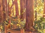 Lopez Riverfront Redwoods