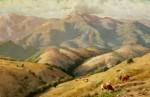 Thaddeus Welch-San Geranimo Hills