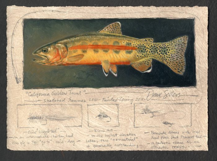 Dave Sellers - California Golden Trout