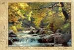 Sellers Deer Creek Pocket Water
