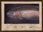 Dave Sellers - Eagle Lake Rainbow