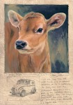 Dave Sellers - Jersey Heifer