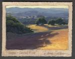 Dave Sellers Shapes Coastal Hills