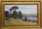 Walker Bodega Bay Pines framed