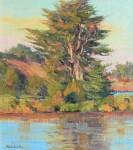 Bart Walker Penny Island Cypress