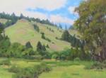 Bart Walker Sonoma Hillside