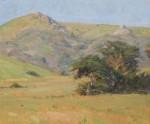 Bart Walker - Wind Blown Cypress
