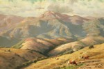 Thaddeus Welch - San Geronimo Hills