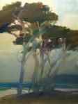 F. Michael Wood - Coast Pines at Twilight