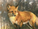 Wood North County Morning Red Fox