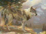 F. Michael Wood Wild Territory